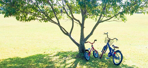 ネットdeサイクル 自転車保険
